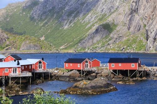 Garden Poster Scandinavia Nusfjord, Norway