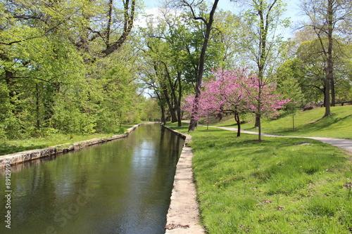 Fotografie, Obraz  City Park Canal and Walkway