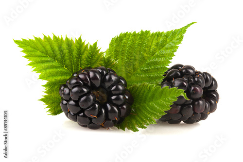 Fotografija  Blackberries with leaf.