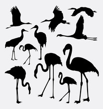 Flamingo In Action Silhouettes