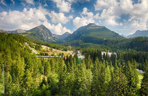 Fototapeta High Tatras with green forest obraz na płótnie