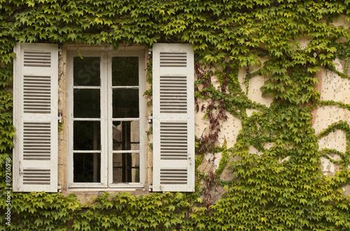 Fotografia, Obraz French Window with Ivy