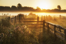 Stunning Sunrise Landscape Ove...