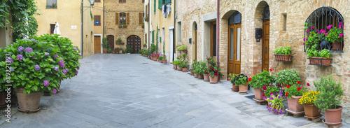 fototapeta na ścianę flowers on alone street in Tuscany in Italy