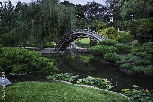 Japanese Garden - 89234984