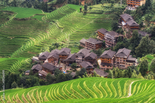 Foto op Canvas Lavendel Longi rice terrace