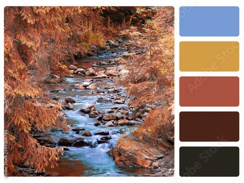 colour palette swatch Wallpaper Mural