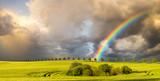 Fototapeta Rainbow - wielobarwna tęcza nad polem po przejściu wiosennej burzy