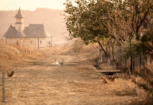 Canvas Prints Eastern Europe Geese on the village road