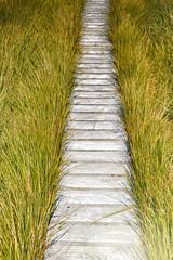 Fototapeta Wooden plank board walkway