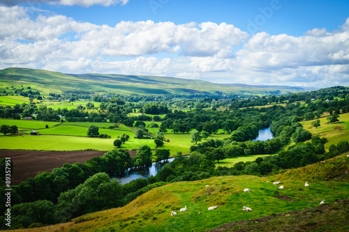 Poster Marron chocolat Meandering River making its way through lush green rural farmlan