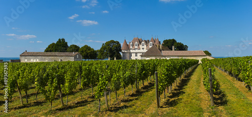 Castle Montbazillac-Vineyard of Bergerac-Dordogne-France Wallpaper Mural