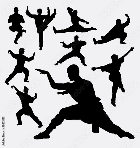Fotografia  Wushu male and female martial art silhouettes
