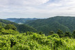 View of mountain, Khao Yai National Park, Thailand
