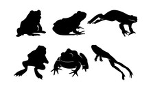 Vector Silhouette Of Frog And Toad In Bundle