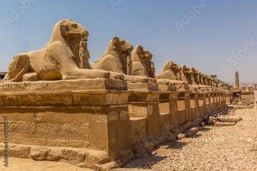 Spoed Fotobehang Egypte luxor avenue