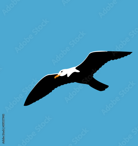 Pinturas sobre lienzo  Soaring seagull in blue sky, seabird isolated on blue background