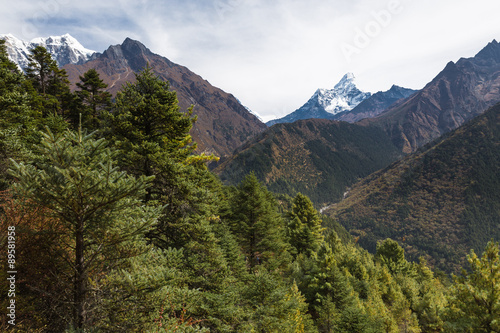 Ama Dablam mountain peaks and deep river canyon. Poster