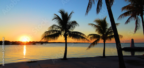 Foto op Aluminium Palm boom Sunrise to Sunset / Views from the Florida Keys