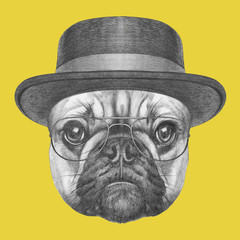 Panel Szklany Pies Portrait of French Bulldog with hat and glasses. Hand drawn illustration.