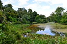 A Lake At A Surrey Estate In ...