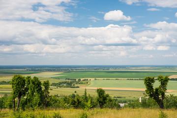 Fototapeta na wymiar Meadow with cloudy blue sky background