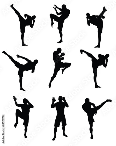Muaythai Martial Arts Wallpaper Mural