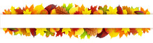 Colorful Autumn Leaves Banner
