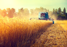 Combine Harvester Agriculture ...