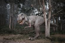 Tyrannosaurus Rex (T-Rex) Im N...
