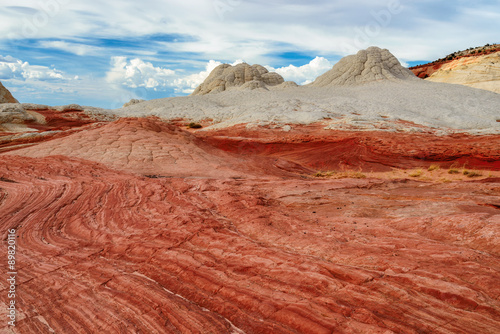 Fotobehang Natuur Park White Pocket, Arizona, Plateau from white and red sandstone