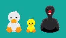 Duck Swan Doll Set Cartoon Vector Illustration