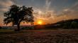 Leinwandbild Motiv Sonnenuntergang