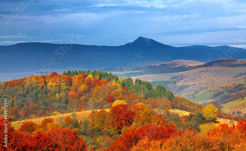 Foto op Canvas Herfst autumn forest and mountains in the background