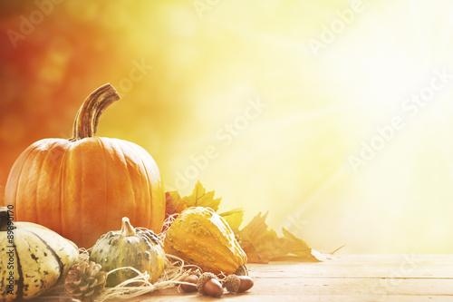 Fotomural Todavía del otoño vida a pleno sol