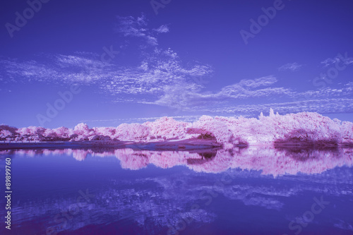 Infrared landscape over lake during Summer sunset