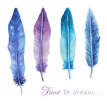 Watercolor Print With Feathers...