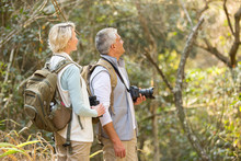 Middle Aged Couple Bird Watching In Forest