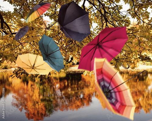 Radość życia: latające, kolorowe parasole nad jesiennym krajobrazem Palatynatu :)
