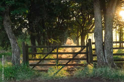 Fotografiet  porteira velha de fazenda em amanhecer de outono