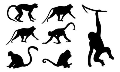 Fototapeta Monkey Silhouette, set vector Animals Icons