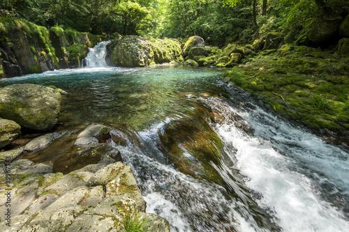 Fotobehang Rivier 黎明の滝と菊池渓谷の渓流