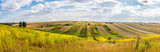 Fototapeta Krajobraz - Summer country