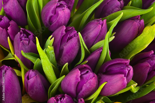 Photo  Nature bouquet from purple tulips for use as background.