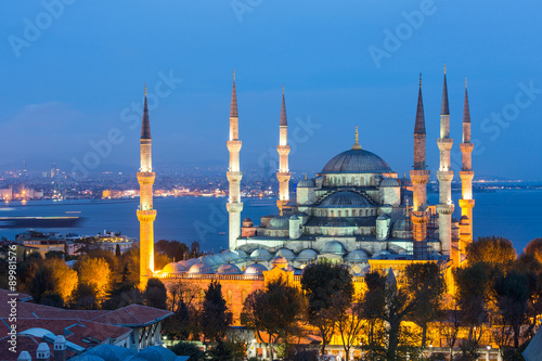 Aerial view of Blue Mosque in Istanbul at night Poster