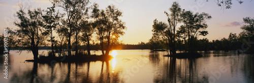 Fotomural Este es el refugio de vida silvestre en el parque Lago Fausse Pointe State al atardecer