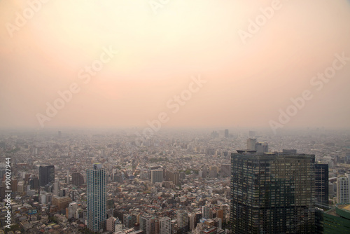 Spoed Foto op Canvas Tokyo Cityscape of Tokyo, the view from free observator of Tokyo Metro