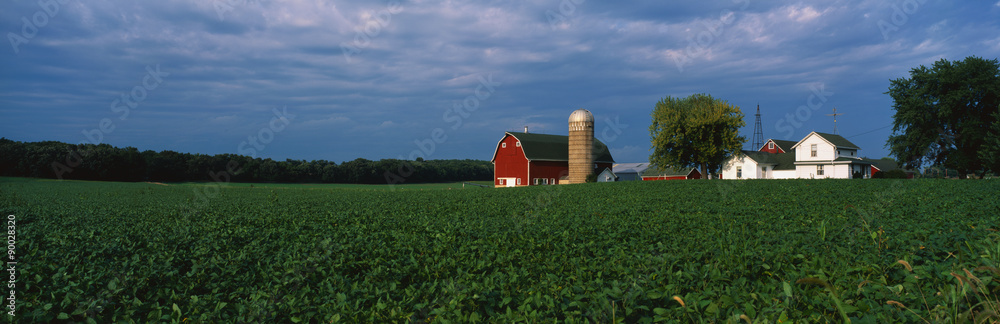 Fototapety, obrazy: This is a farm with a silo and barn. Directly behind it sits a white farmhouse. It sits in the middle of a green farm field.
