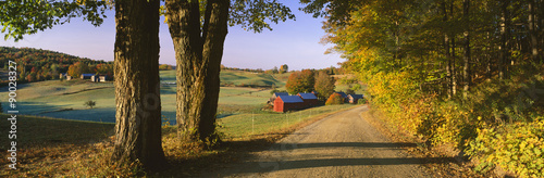 Foto  This is the road leading past the Jenne Farm.