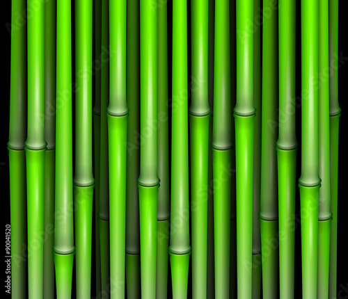 Recess Fitting Zen Bamboo abstract vector illustration isolated eps 10